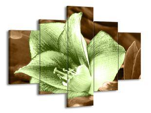 Zelený kvítek