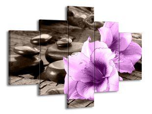 Fialové květiny na zahradě