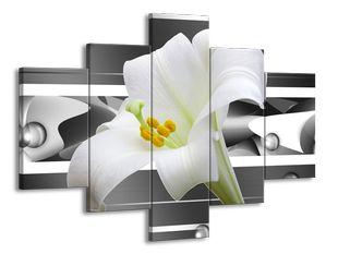Bílý zvonek květ