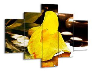 Žlutý zvonek