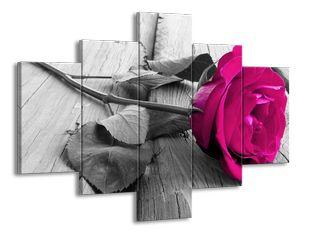 Rudá růže na dřevě