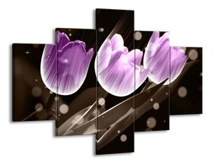 Vánek v tulipánech