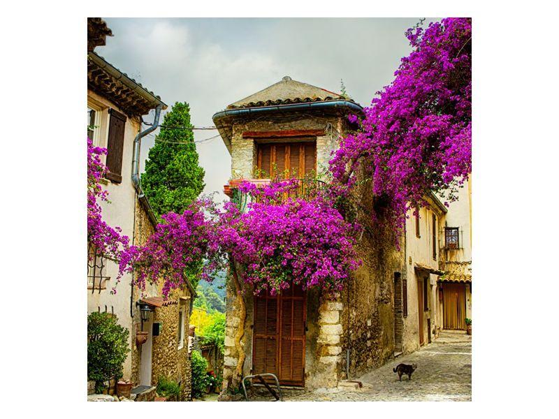 Květované ulice