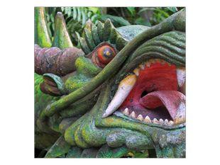 Výraz draka