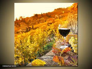 Ráj vína