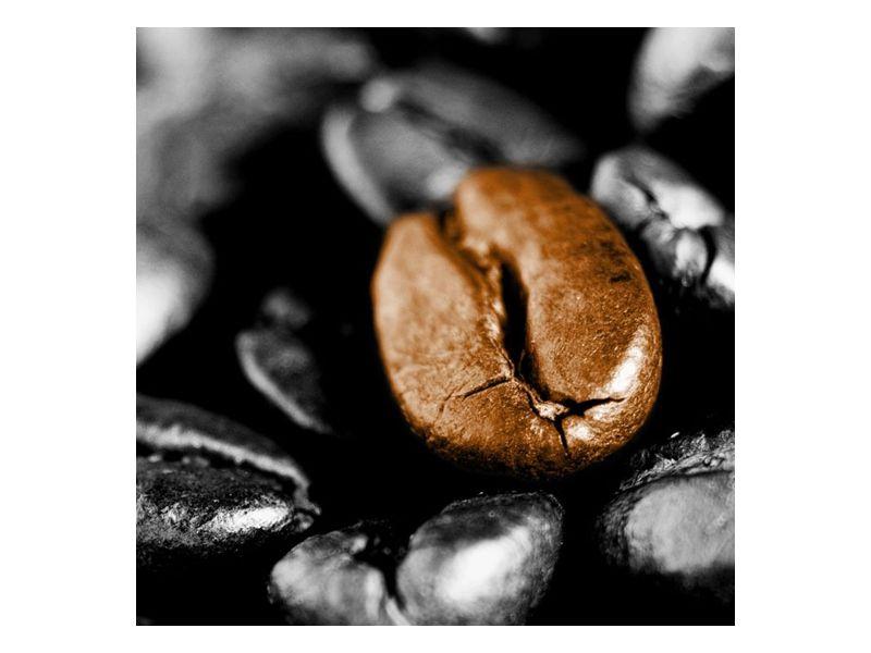 Kávove zrno
