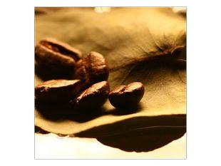Zrna na listu