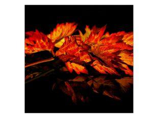 Podzimní lístí