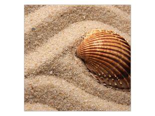 Lastura v písku