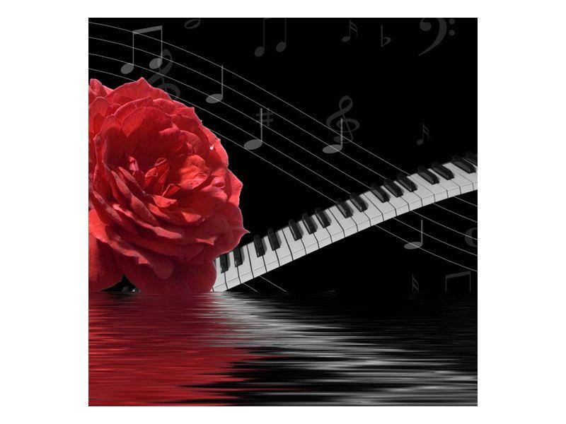 Něžná hudební poezie
