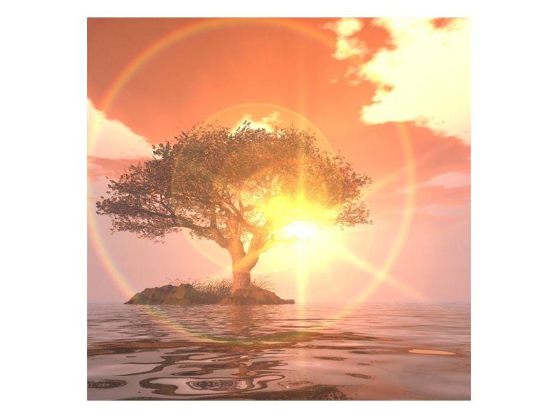 Strom na ostrůvku