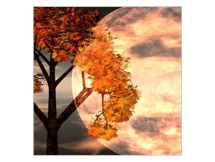 Strom a měsíc