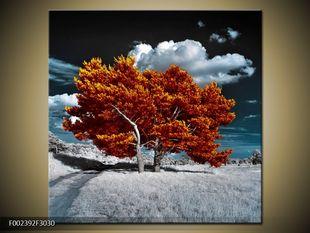 Strom na louce
