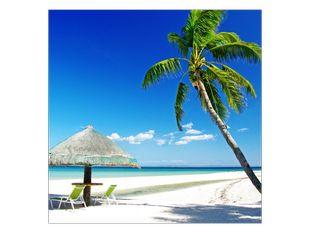 Tropický den