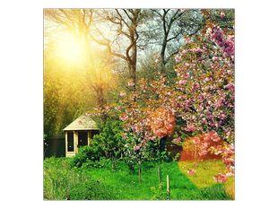 Ráj v zahradě