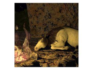 Spící kůň