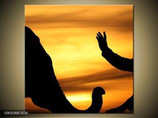 Sloní pohlazení