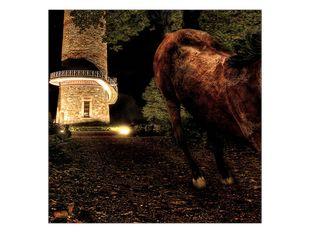 Kůň a rozhledna