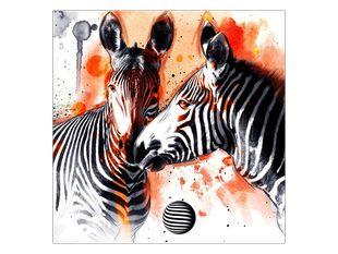 Láska dvou zeber
