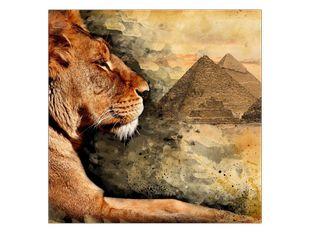 Lev a pyramidy