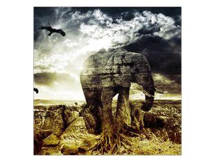 Sloní skála v jasu slunce