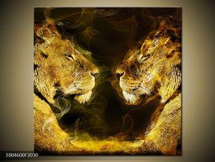 Kouřoví lvi