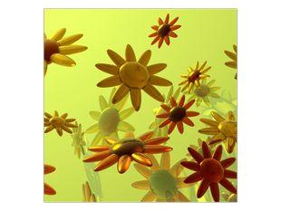 Květinový déšť
