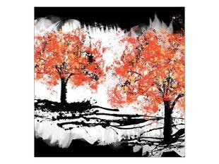 Radost stromů