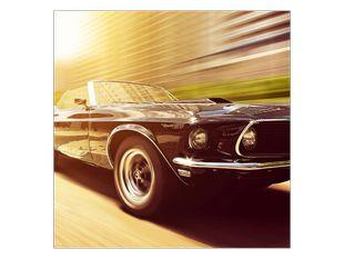 Mustang v pohybu