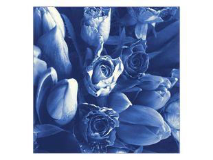 Modré kvetiny