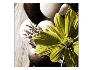 Květina ve žlutém