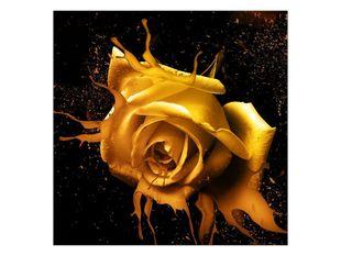 Mléčně zlatá růže
