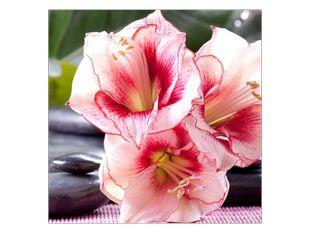 Sváteční květiny