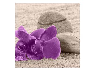 Orchidej na pláži