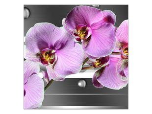 Něžná fialová