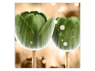 Zelené tulipány